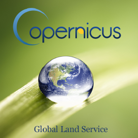 Copernicus Global Land