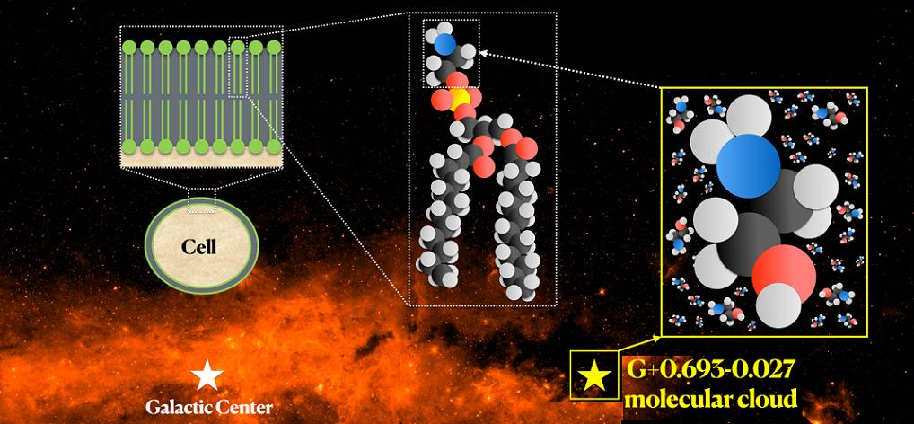 Descubrimiento de una molécula clave en el origen de la vida.
